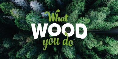What Wood You Do